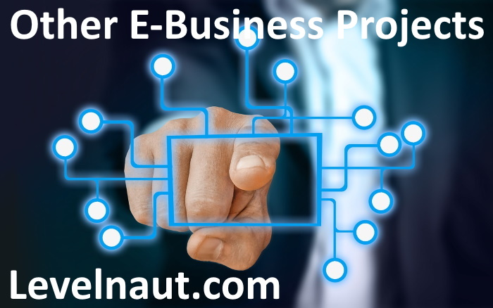 Other E-Business Projects